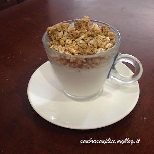 yogurt_sembrasemplice.myblog.it